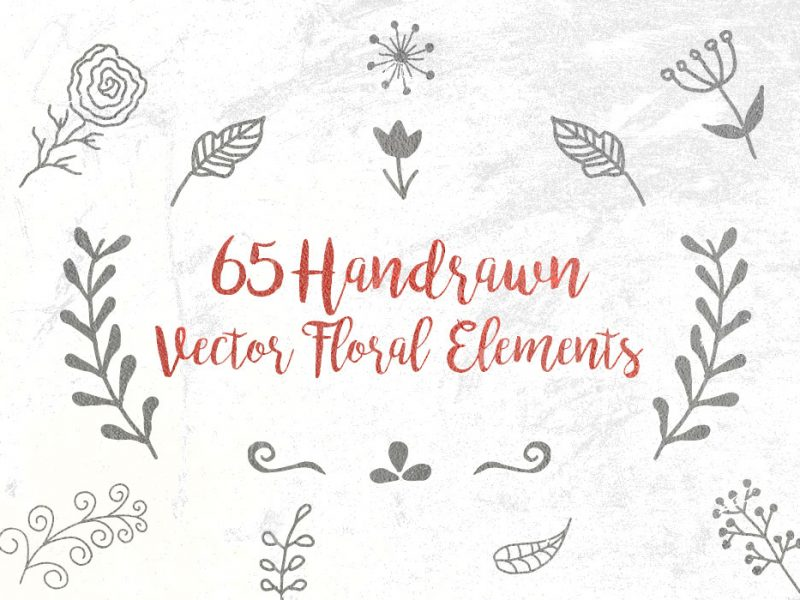 Free Vector Handdrawn Floral Elements
